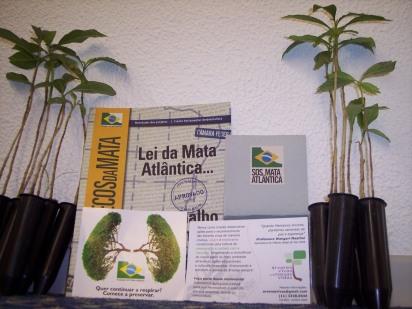 Kit árvore Tucaneira