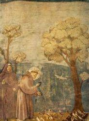 São Francisco de Assis_Sermão aos Pássaros - Pintura de Giotto