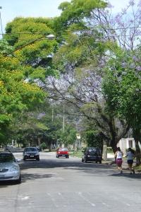 Rua Barão da Passagem