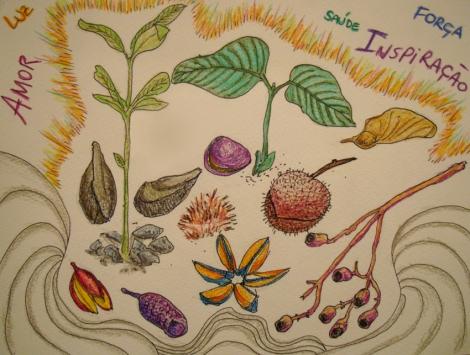 Ilustração de Luciano Ogura e Juliana Pereira