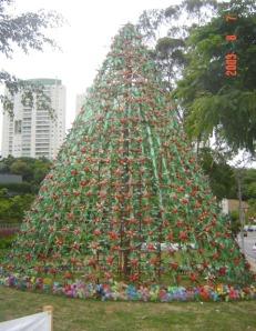 árvore próxima Pq Burle Marx - Morumbi - São Paulo