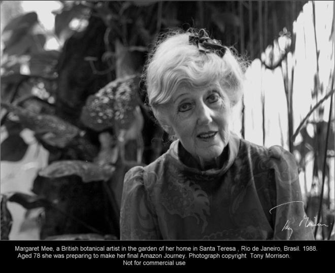 Margaret Mee com 78 anos de idade no jardim de sua casa em Santa Teresa, Rio de Janeiro, Brasil. Cercada por plantas tropicais ela estava se preparando para sua última viagem para a Floresta Amazônica.