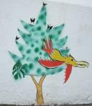 com-pássaro (muro igreja av pompéia x guiará)