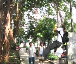 fazendo ginástica com as árvores