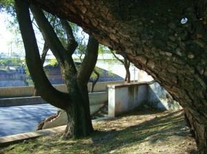 Ponte das Bandeiras 2 - arco natural e arco construído pelo homem - foto Luciano Ogura