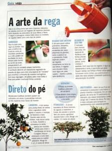 Guia Veja - 04/07 a 10/07 - Como regar melhor suas plantas!