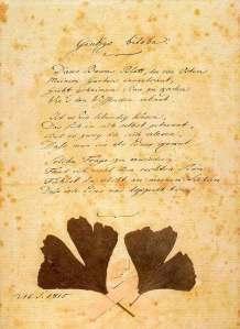 Cópia do Poema Original escrito por Goethe com folhas de Ginkgo / 15, September 1815. O original encontra-se no Goethe Museum, Düsseldorf (Germany) / tamanho 21,4 x 32,7 cm