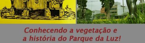 Cartaz - Caminhada no Parque da Luz