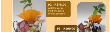 Cestas de Páscoa com mudinha de Cacaueiro - venda limitada até o encerramento de estoque de mudas - somente para grande São Paulo - ligue 11 33380544 e encomende a sua até dia 29 de março