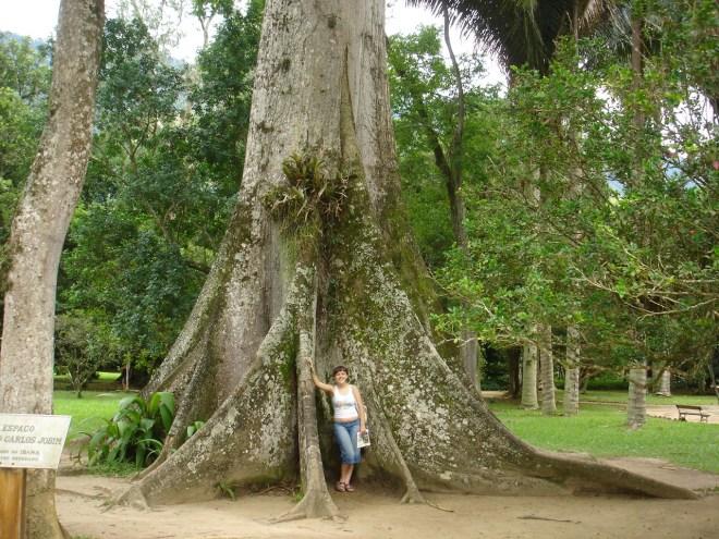 Adriana junto a base da grande sumaúma que habita o Jardim Botânico do Rio de Janeiro, também conhecida como árvore do Tom Jobim.