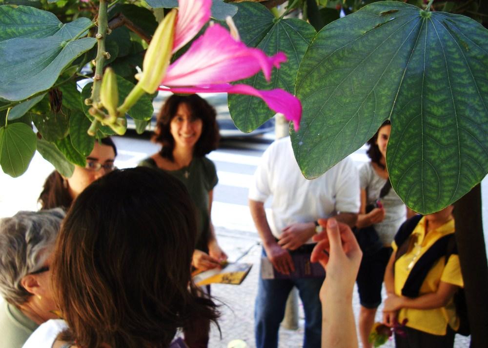 Apreciando a floração - foto Luciano Ogura - 19.06 SESC Consolação