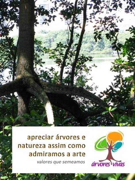 conexão essencial - arte e natureza