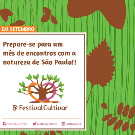 vem ai festival 2014